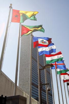 Alcune bandiere degli Stati membri dell'ONU, di fronte all'edificio del Segretariato delle Nazioni Unite, New York (USA)