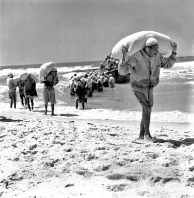 Su una spiaggia vicino a Gaza, rifugiati scaricano sacchi di farina trasportati a Gaza dall'Agenzia delle Nazioni Unite per il Soccorso e l'Occupazione dei Profughi (UNRWA), maggio 1957.