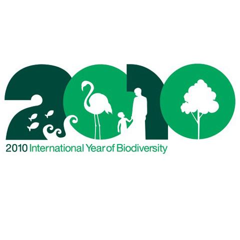 Logo 2010 - Anno internazionale della biodiversità