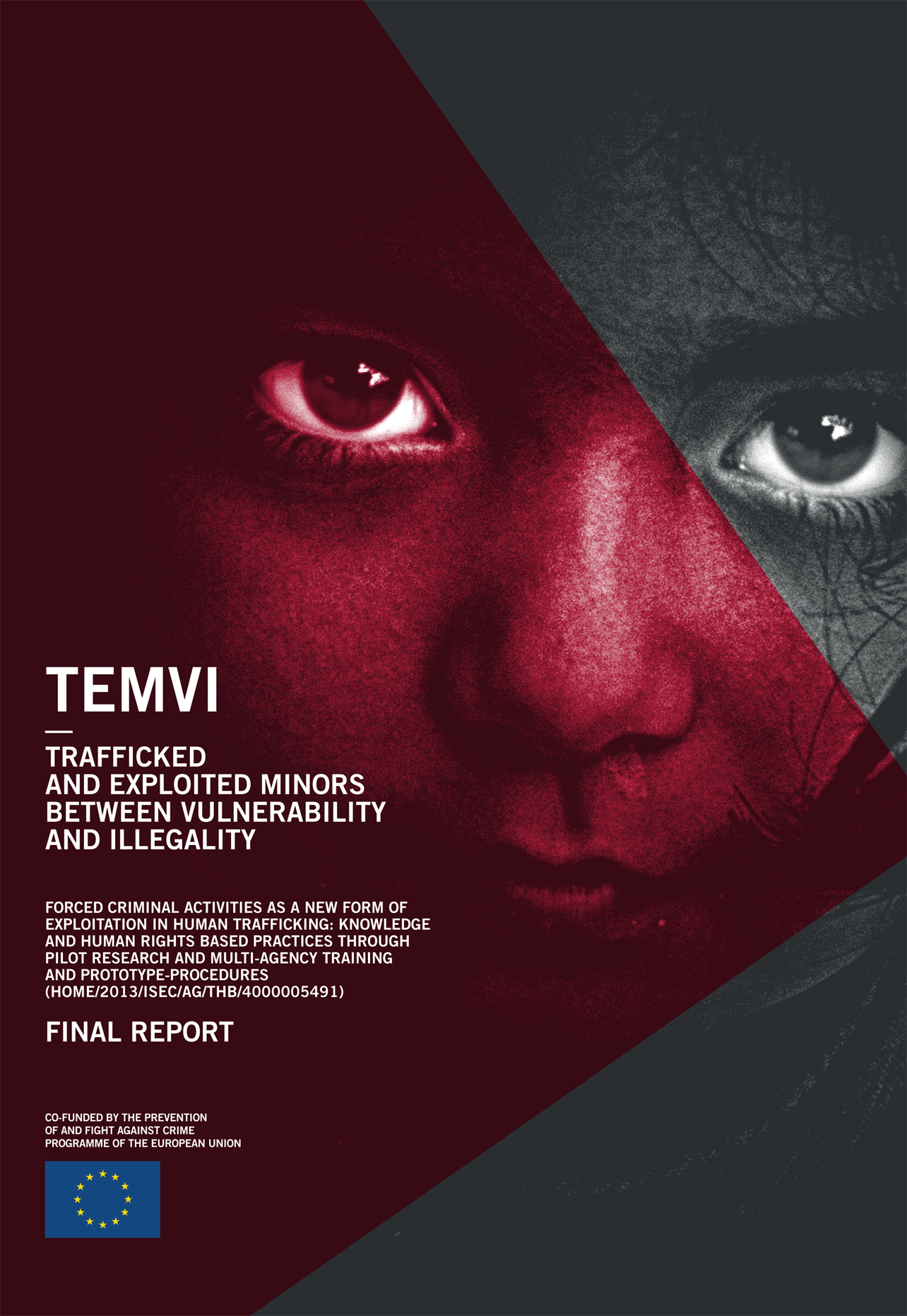 Cover of the TEMVI final report in English