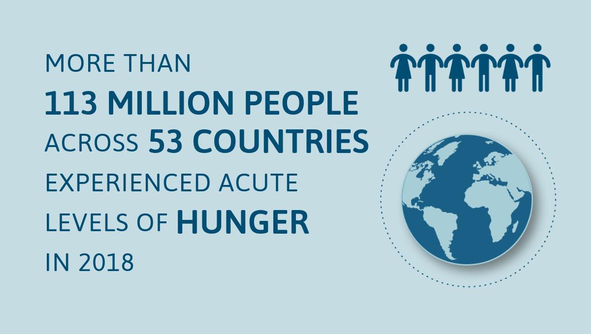 Grafico: più di 13 milioni di persone in 53 paesi sono vittime di fame acuta, malnutrizione e necessitano di aiuti e mezzi di sussistenza.