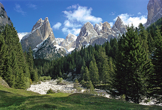 Immagine di una zona delle Dolomiti, con le montagne sullo sfondo circondate da boschi. Questa zona è stata proclamata Patrimonio mondiale dell'umanità UNESCO.