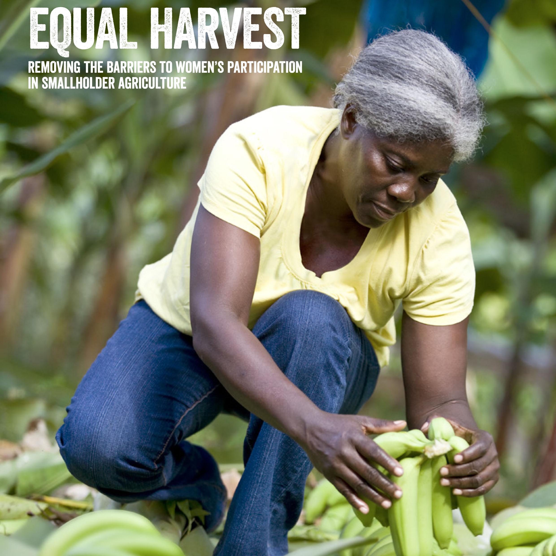 """Copertina del rapporto """"Equal Harvest"""" pubblicato da Fairtrade Foundation, marzo 2015"""