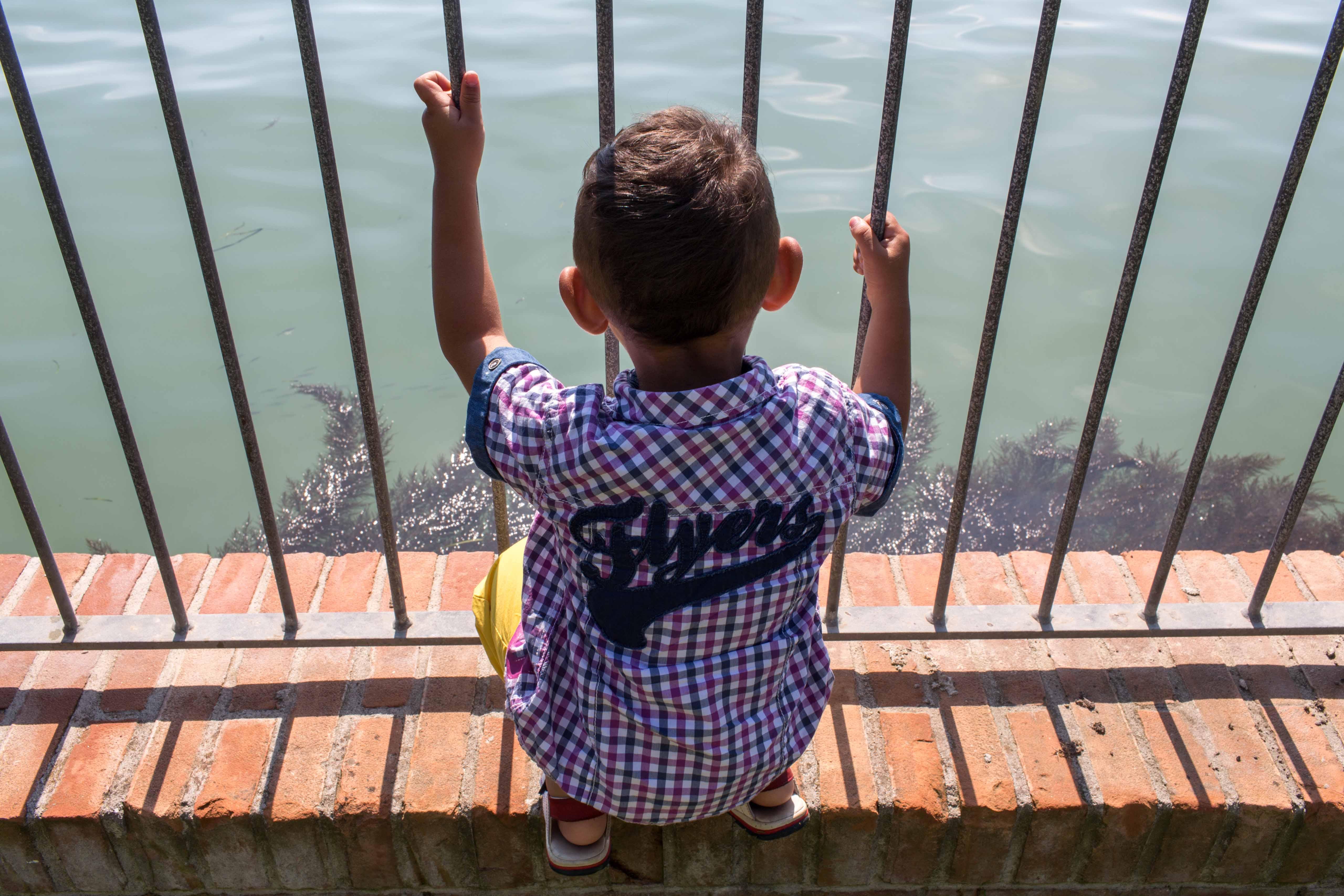 """""""La Gabbianella e altri animali"""" onlus, Convegno: """"La rete necessaria – come tutelare il diritto ad una crescita armoniosa per i figli dei detenuti e per i bambini che crescono negli ICAM"""", 12 ottobre 2018, Venezia"""