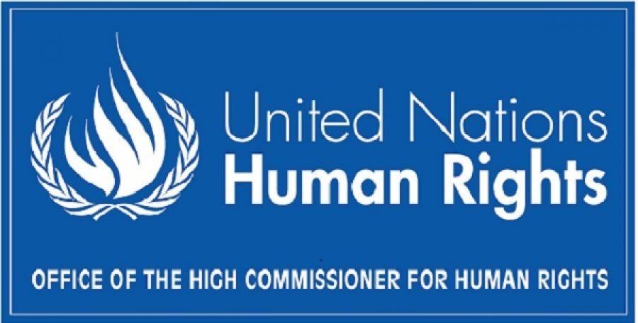 Logo Procedure speciali presso il Consiglio diritti umani delle Nazioni Unite