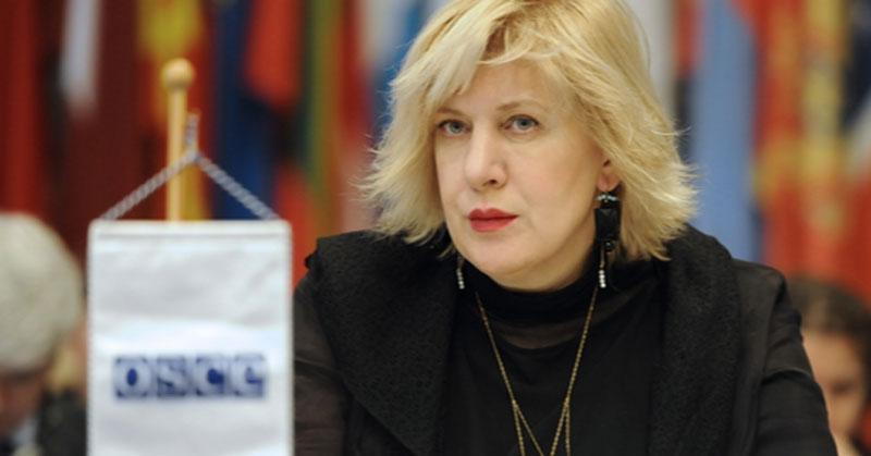 Dunja Mijatović, Rappresentate OSCE sulla libertà dei Media al Consiglio Permanente, Vienna.