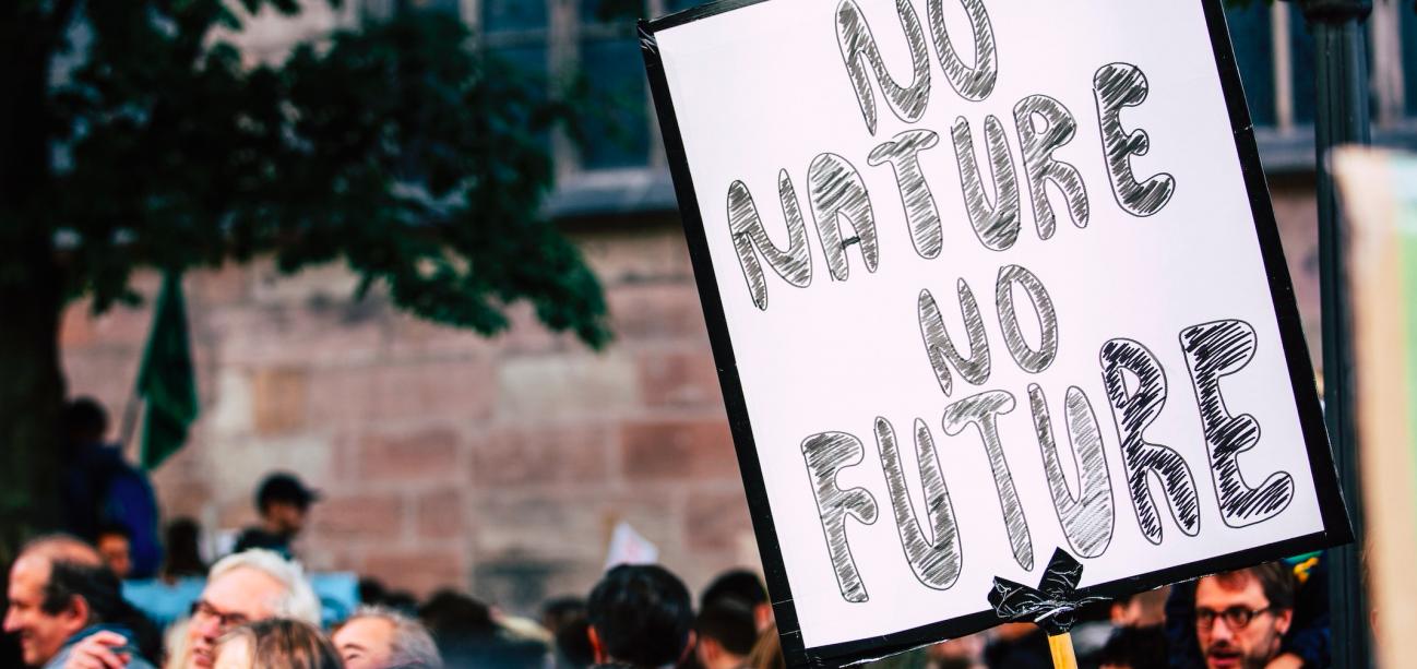 I 13 obblighi in capo agli Stati in termini di biodiversità e diritti umani
