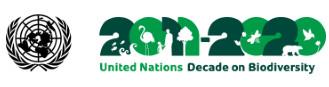 Logo 2011-2020: Decennio della Biodiversità delle Nazioni Unite