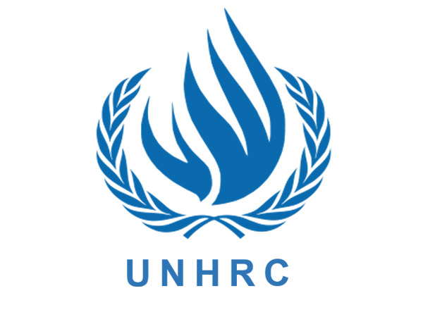 Human Rights Council - UN
