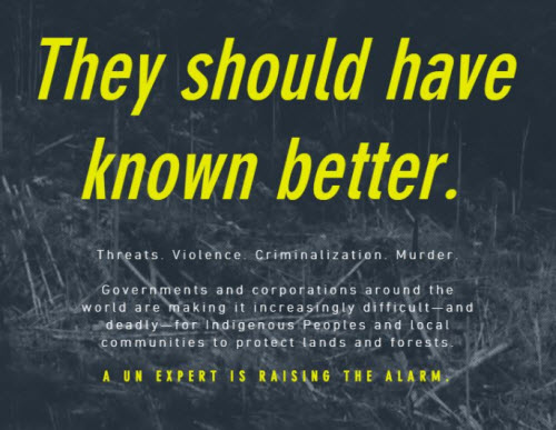 "Victoria Tauli-Corpuz, UN Special Rapporteur on the Rights of Indigenous Peoples, letter to world leaders entitled ""They should have known better"""