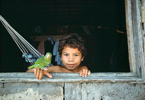 Bambino con il suo pappagallo domestico alla finestra