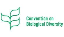 Logo Convenzione sulla diversità biologica - CBD