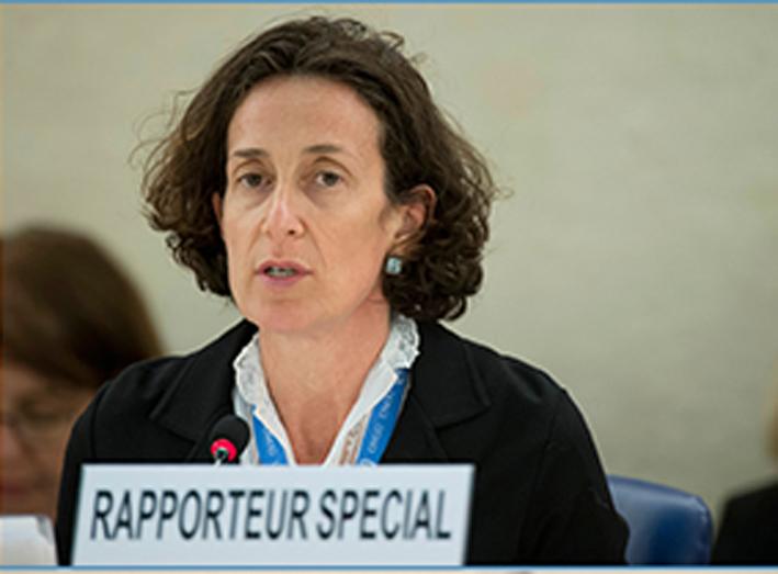 Annalisa Ciampi, Relatrice speciale per i diritti alla libertà di assemblea pacifica e di associazione
