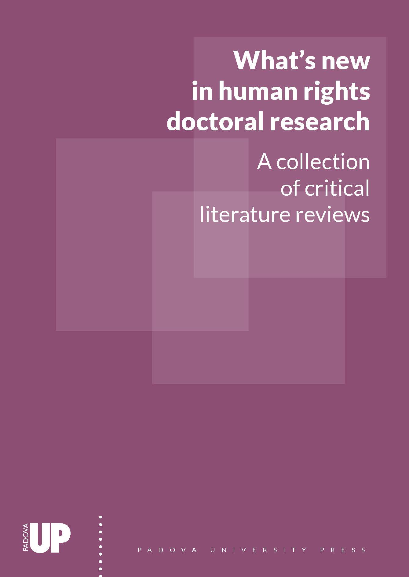 Whats new in  Human Rights Doctoral Research, series cover