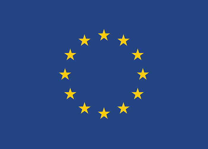 Logo EU Neighbourhood Info Centre