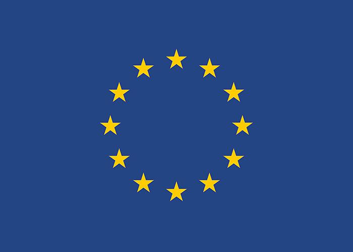 Logo EU Neighbourhood Info Centre