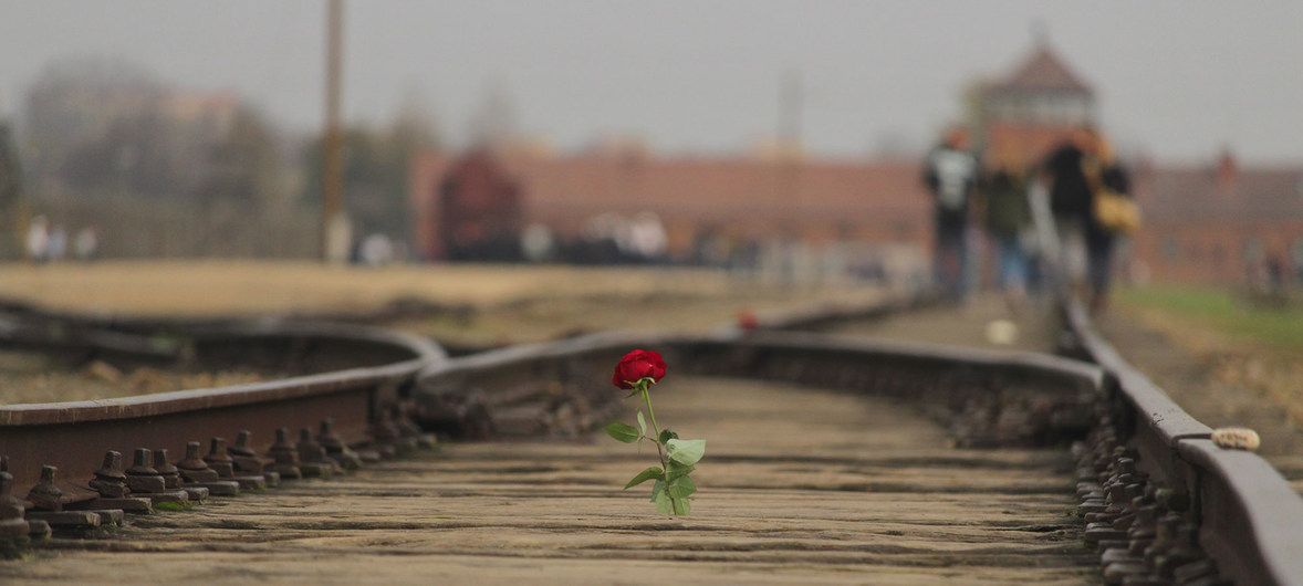 A rose placed on the railway tracks at the Memorial and Museum Auschwitz-Birkenau, Poland.