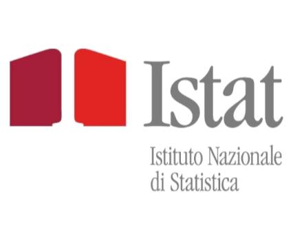 Istituto Nazionale di Statistica
