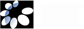 Logo IDA - Alleanza internazionale disabilità