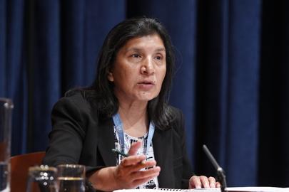 Rashida Manjoo, Relatrice speciale delle Nazioni Unite sulla violenza contro le donne, 2011