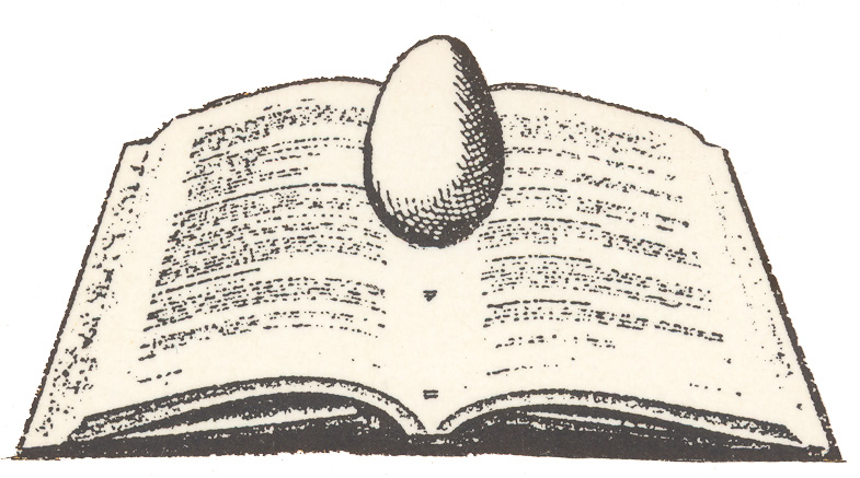 """Graphic Image of an open book, used by the Human Rights Center as the logo on the cover of the series """"Studi e Ricerche sui Diritti Umani,"""" or Studies and Research on Human Rights. (Cedam)"""