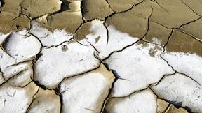 Effetti della desertificazione: un terreno molto arido in evidente salinizzazione.