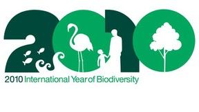 Logo dell'anno internazionale della biodiversità. il 2010 è illustrato con elementi iconografici che simboleggiano la biodiversità: i pesci, le onde, un fenicottero, un adulto e bambino, e un albero.