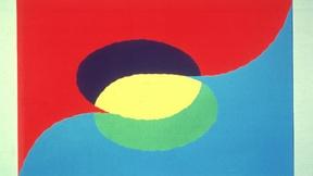 Tolerance Flag of Dan You
