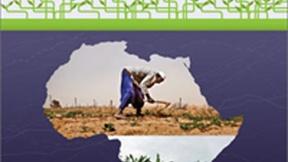 UNDP, Copertina del Rapporto sullo sviluppo umano in Africa, 2012