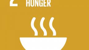 """Icona degli Obiettivi di Sviluppo Sostenibile, Obiettivo 2 """"Zero fame"""""""