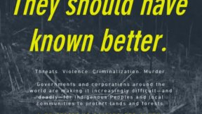 """Victoria Tauli-Corpuz, UN Special Rapporteur on the Rights of Indigenous Peoples, letter to world leaders entitled """"They should have known better"""""""