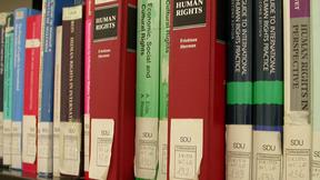 """Particolare di uno scaffale della biblioteca del Centro diritti umani. In prmo piano alcuni volumi sui diritti umani classificati nella sezione """"Diritto internazionale"""""""
