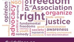 """Composizione grafica riportante l'elencazione di diversi diritti umani, in basso bianco su sfondo viola testo """"Guidelines on freedom of association"""" e loghi di OSCE/Odhir, Commissione di Venezia e Consiglio d'Europa"""