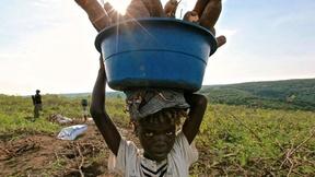 bambino congolese che porta in testa un cesto pieno di tuberi