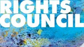 Consiglio diritti umani delle Nazioni Unite
