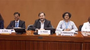La foto ritrae gli attuali componenti del gruppo di lavoro delle nazioni unite su imprese e diritti umani