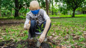 The image shows a man planting trees in the Democratic Republic of the Congo to help fight climate change.